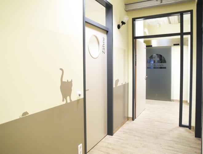 Tierarztpraxis_Innentüren_Behandlungsräume2