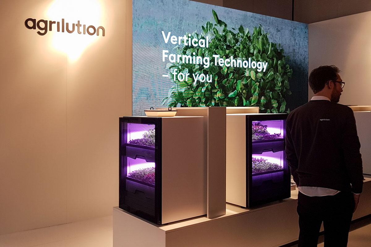Mit dem Plantcube von agrilution können ganzjährig Nutzpflanzen direkt in der Küche angebaut werden