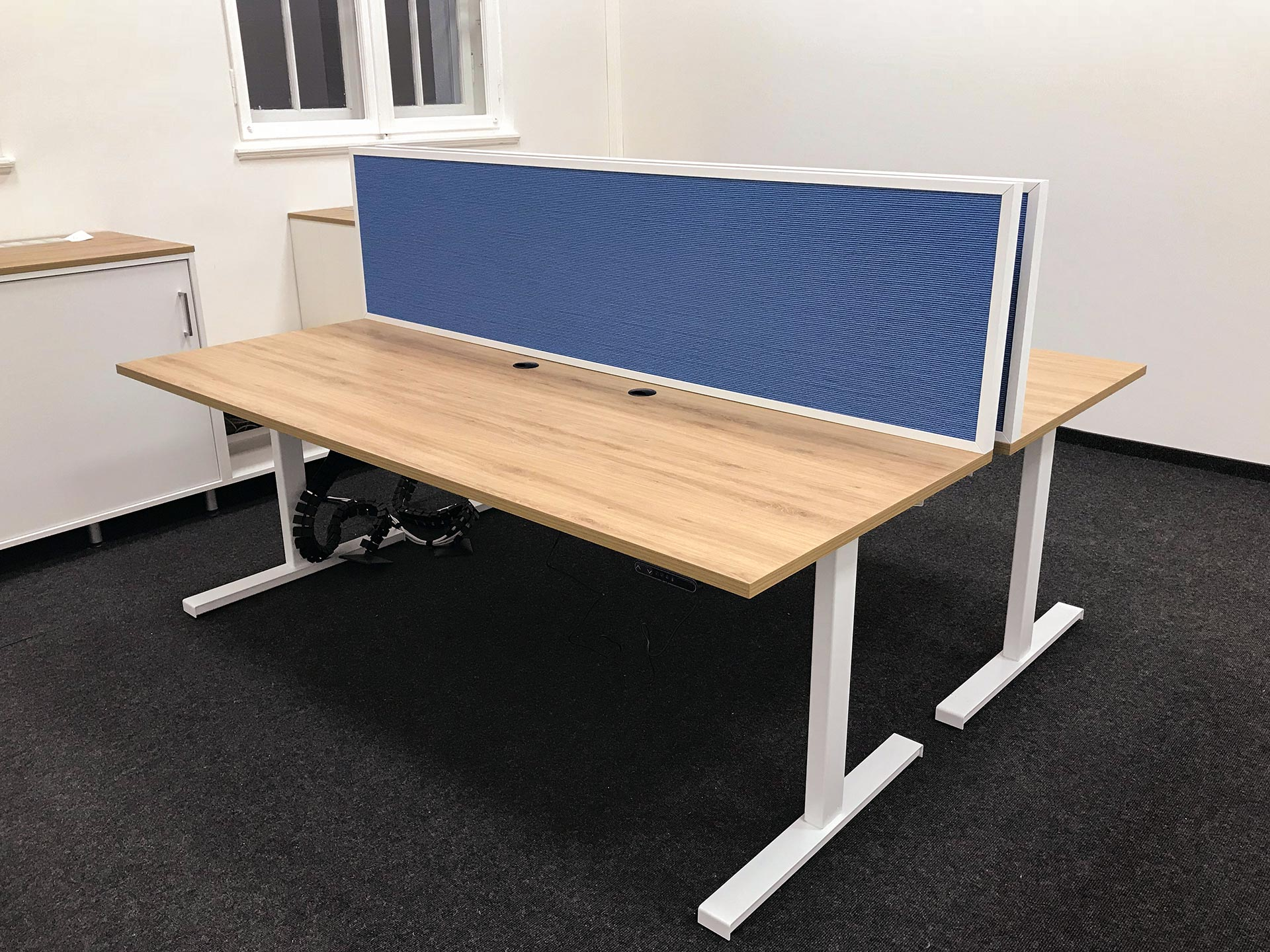 Die elektrisch höhenverstellbaren Schreibtische der Mitarbeiter werden durch blaue Akustikpaneele voneinander abgeschirmt