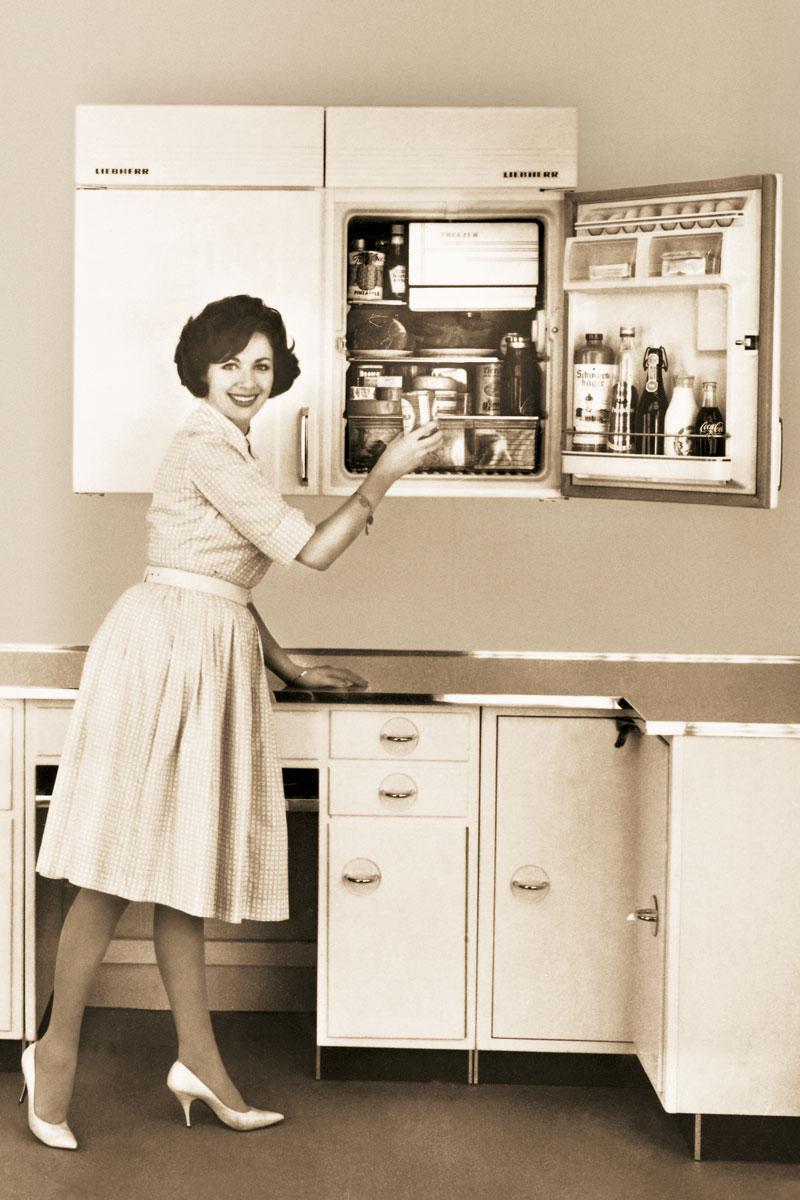 Vorreiter in Sachen Kühltechnik seit 1954